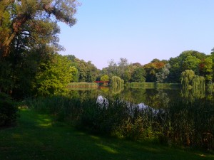 Park view.